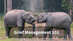 Grief Management 101