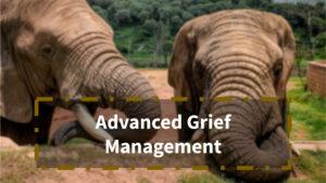 Advanced Grief Management