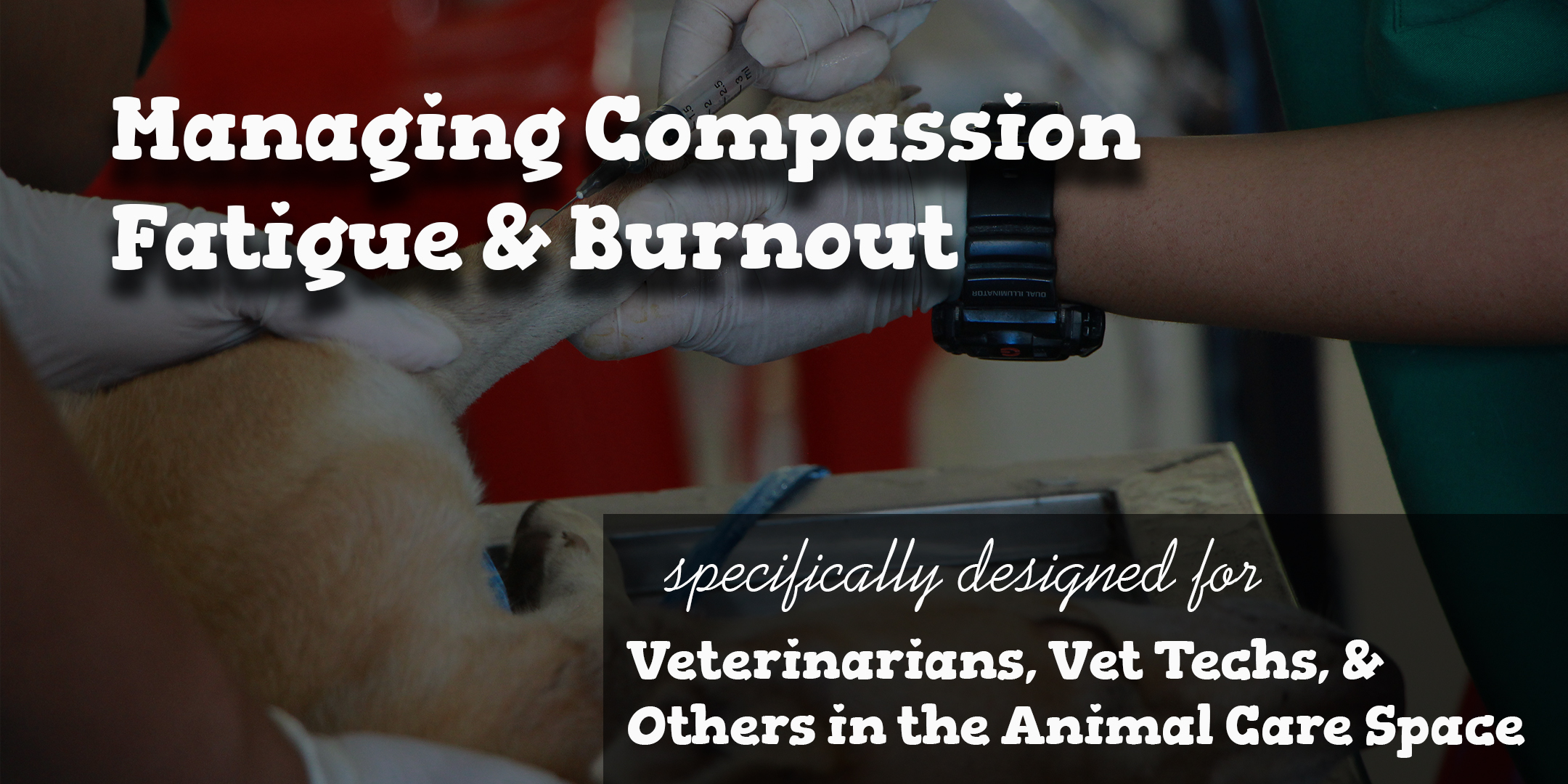 Grieving@Work - Workshop - Veterinary Compassion Fatigue